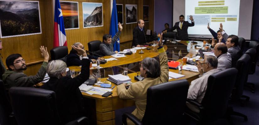 Plan Regulador Arica: Concejo Municipal extiende zona de resguardo de humedal del río Lluta